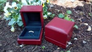 astuccio anello fidanzamento