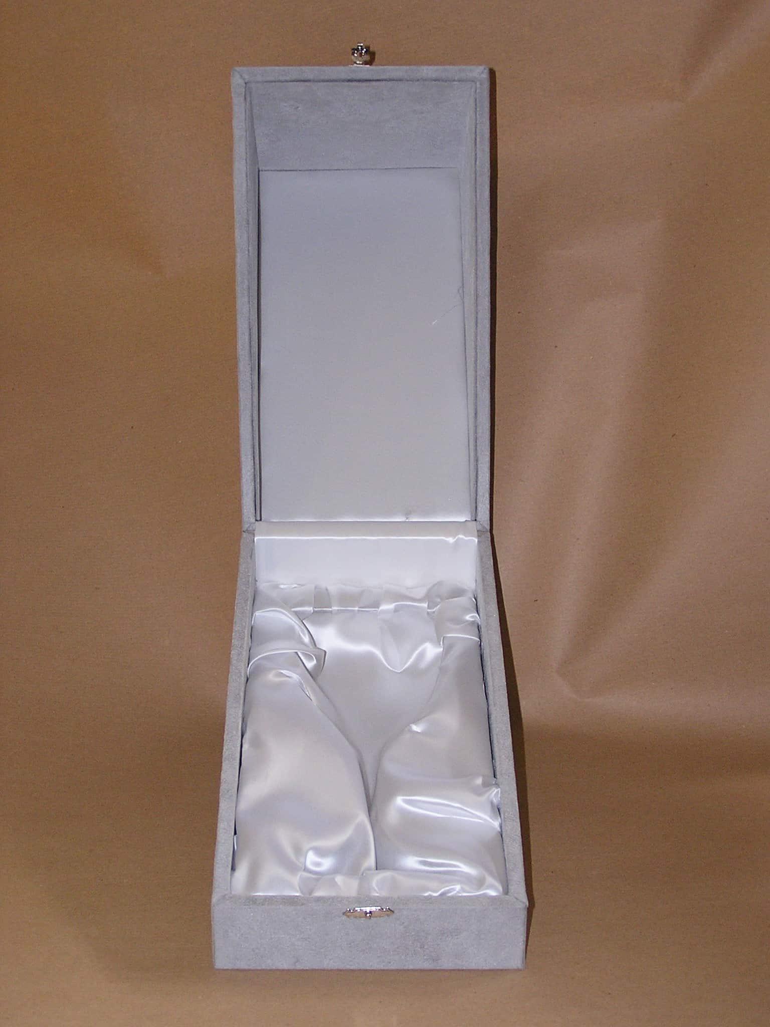 silver goblet case